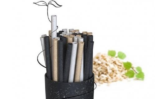 تولید نی و محصولات مصرفی با استفاده از تراشه چوب