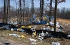 کیسه¬های پلاستیکی تهدیدی برای محیط زیست